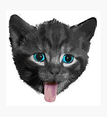 Cute Cat Meow Photographic Print