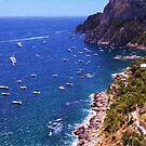 The Waters Off Capri Italy by daphsam