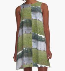 Ducks A-Line Dress