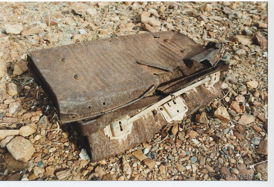 Rusted suitcase by AndrewBentley