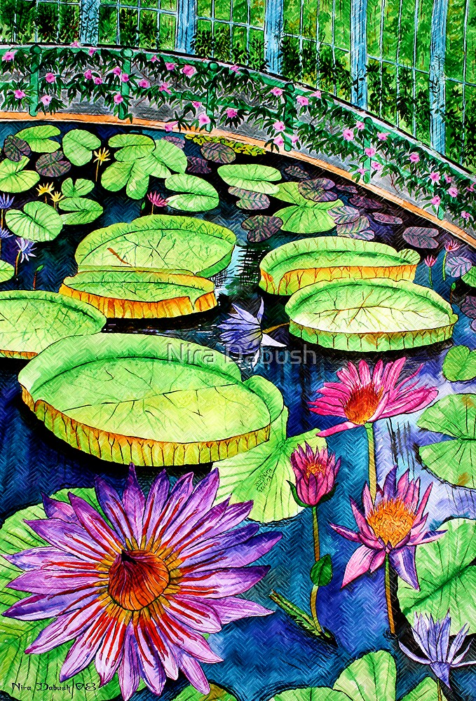 The Rainbow Pond by Nira Dabush