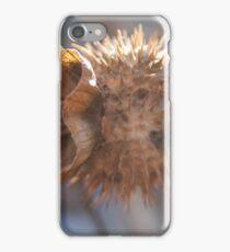 Spike bloom iPhone Case/Skin