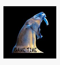 Hear Me Roar - Game Time Photographic Print