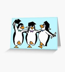 Graduation Penguins  Greeting Card