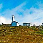 Cape Spear Scenery by Ryan Piercey