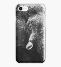 The Emerging Elephant iPhone Case/Skin