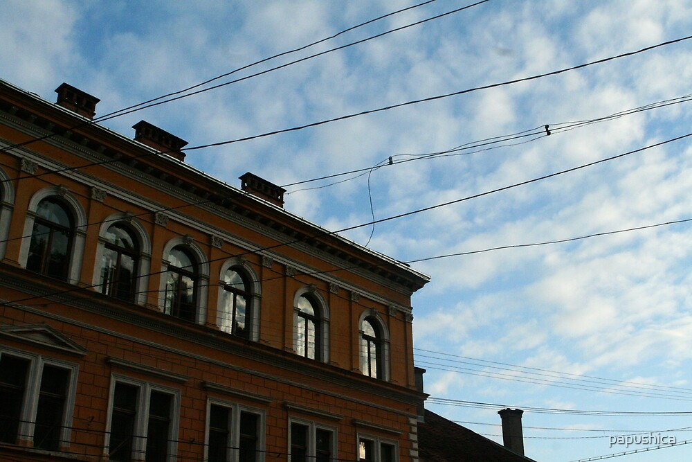 Wires by papushica