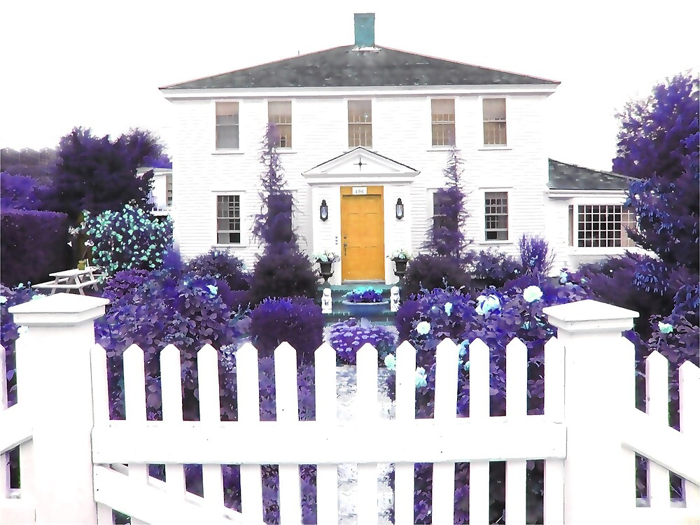 Beyond The Picket Fence Is A Gold Door by Tom  Reynen