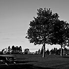 Bowering Park by Ryan Piercey