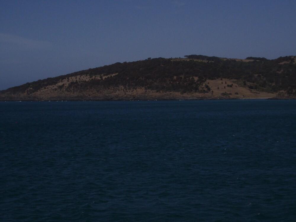 Ferry View of Kangaroo Island by samaus