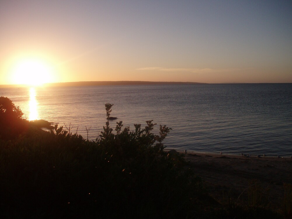 Sunset  by samaus
