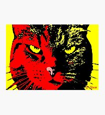 ANGRY CAT POP ART -  RED YELLOW BLACK Photographic Print