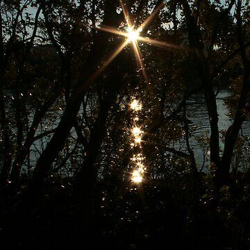 Starlight by grazgar