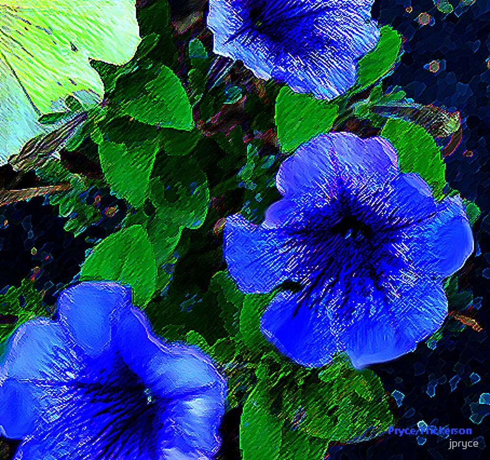 Petunia by jpryce