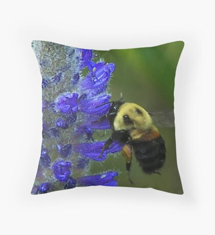 The Pollinator, the sequel Throw Pillow