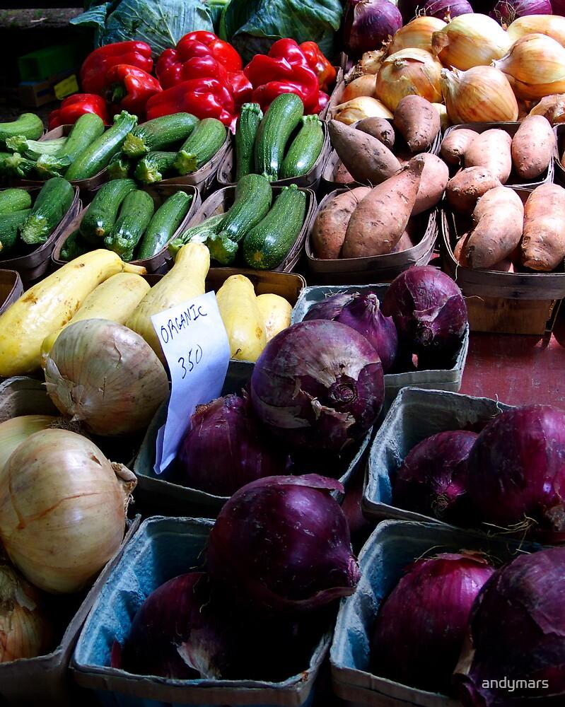 organic vegetables by andymars