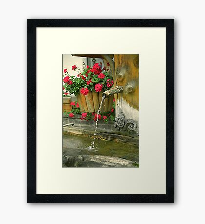 Water and flowers Framed Print