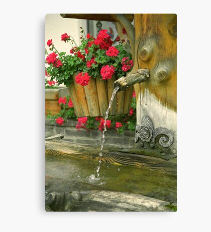 Water and flowers Canvas Print