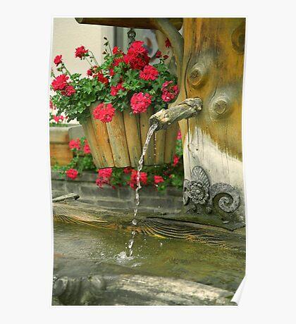 Water and flowers Poster