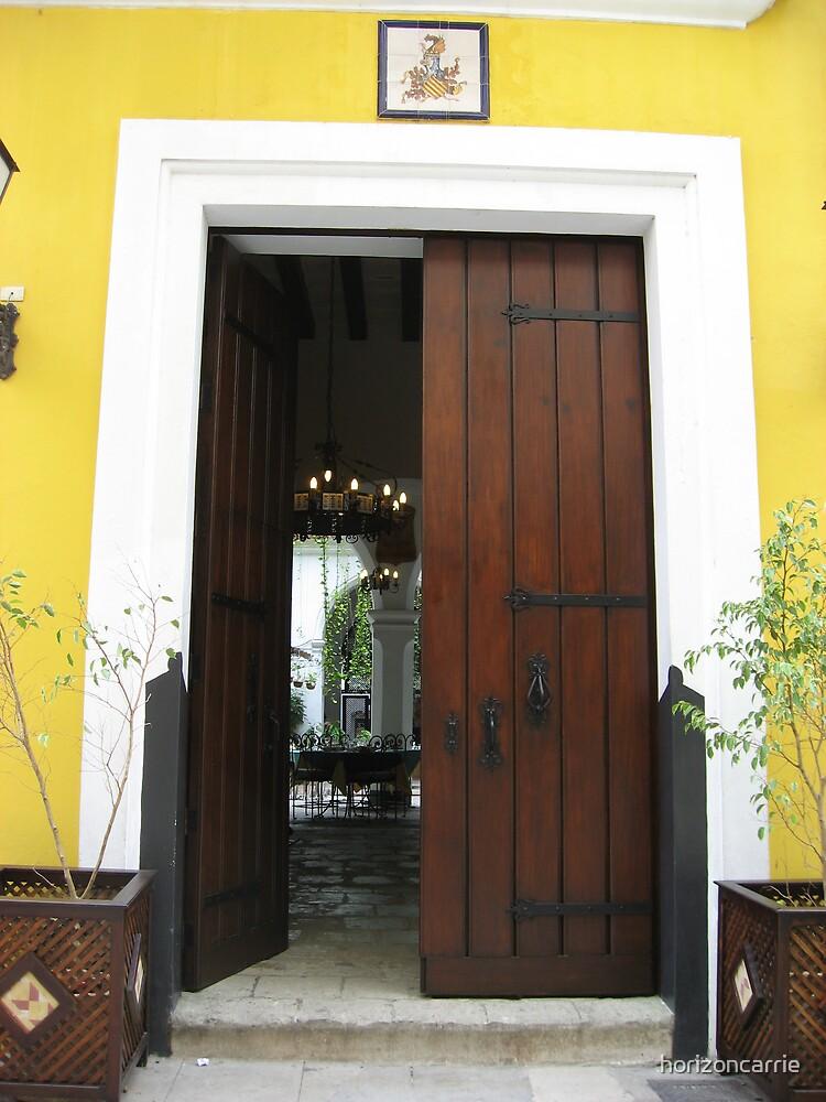 Door in Havana by horizoncarrie