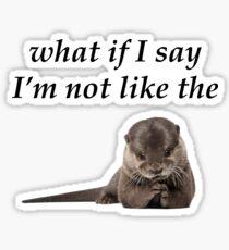 Foo Fighters - The Pretender otter Sticker