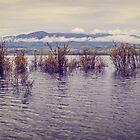 Lake LaBerge by Yukondick