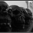 Dusty Skulls. by Rob McFall
