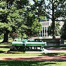 Cannon Near Tecumseh Statue by Susan Savad