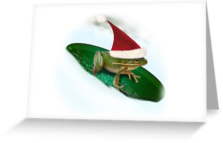 Dashing through the Snow...Sledding Frog by Gravityx9
