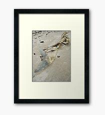 flesh Framed Print