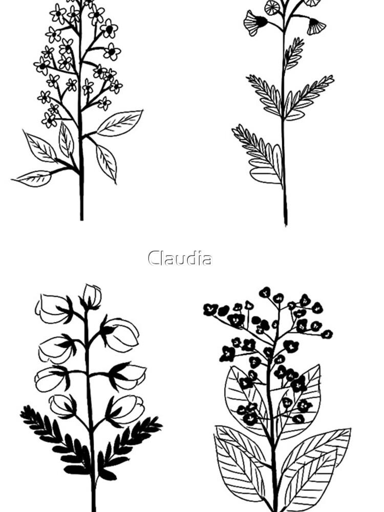 Las flores de clozano5117