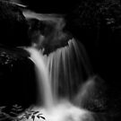 My favourite Waterfall in the Black Forest by Imi Koetz