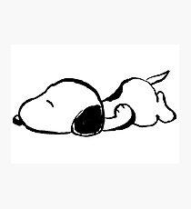 Snoopy sleeping Photographic Print