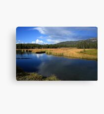 Tranquil Yellowstone Canvas Print