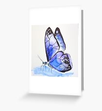 Chalk Hill Blue Greeting Card