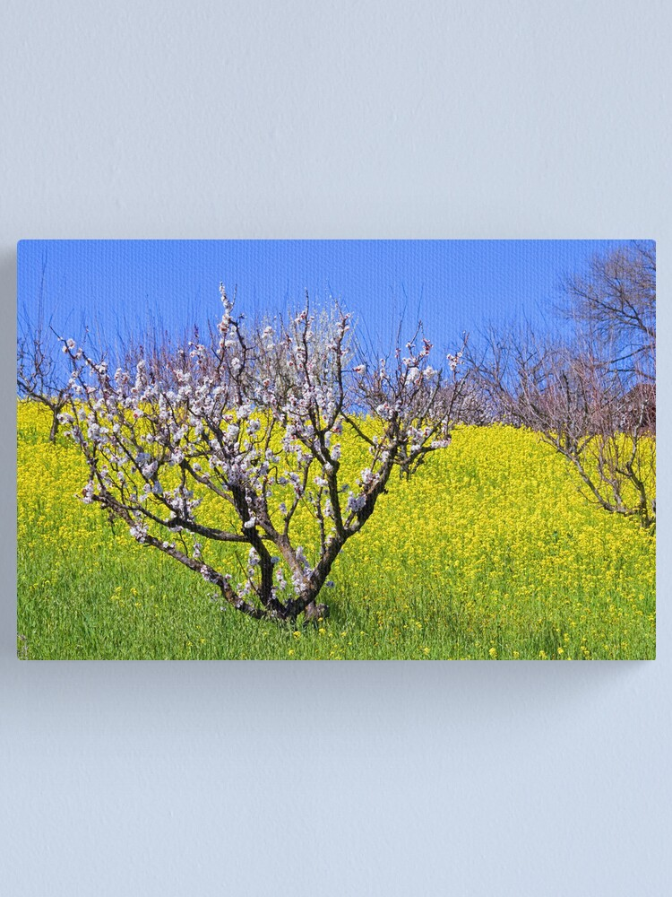 Alternate view of The Hills Are Alive Canvas Print