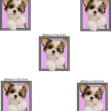Huxley The Terp - Sticker Pack of 5 by c-sima