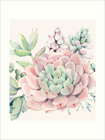 Hübsche Succulents-rosa und grüne Wüste Succulent Illustration von DesertDecor