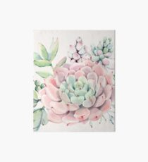 Pretty Succulents Pink and Green Desert Succulent Illustration Art Board