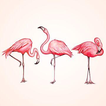 Flamingo by KellyGilleran