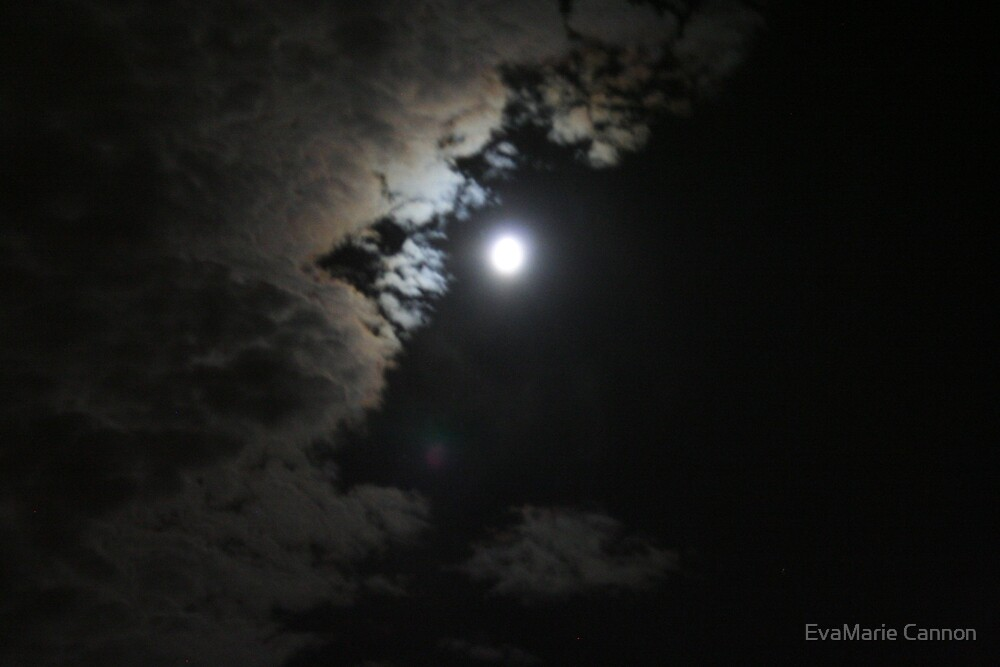 Flagstaff moonlight... by EvaMarie Cannon