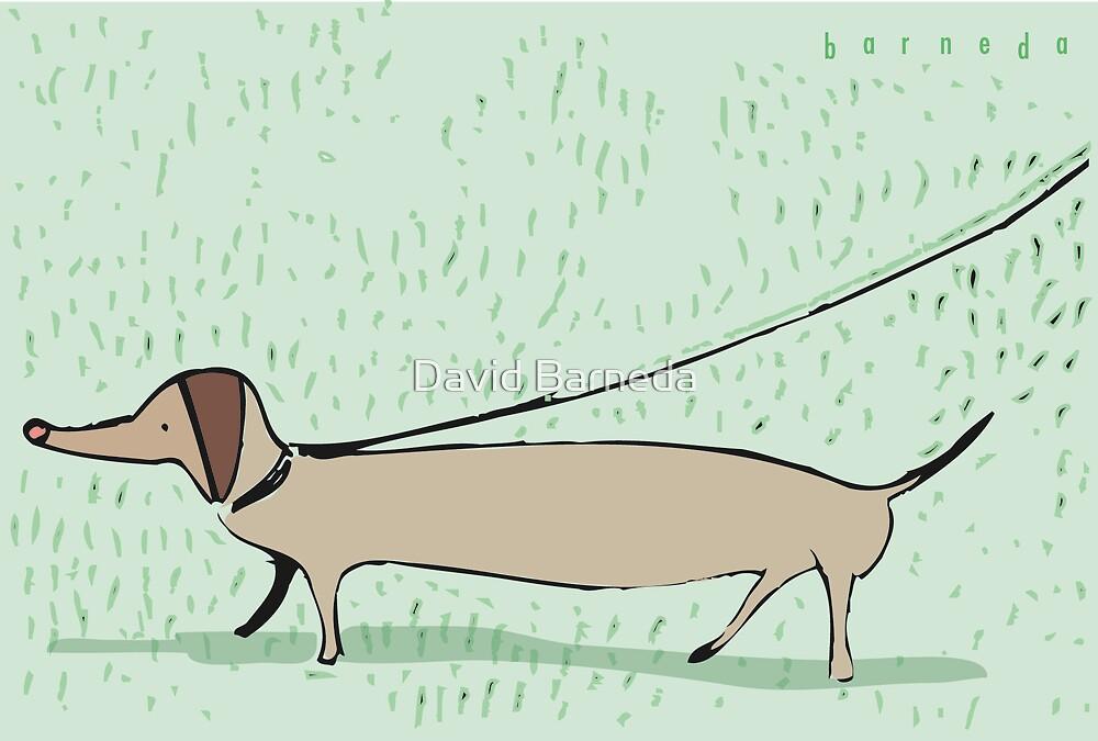 Walk the dog by David Barneda