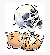 Kitten and Skull Photographic Print