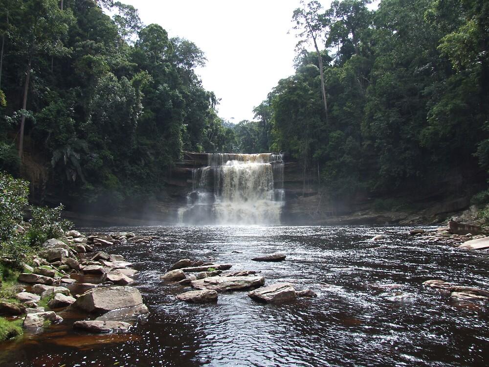 The majestic Maliau Falls - Maliau Basin - Borneo by David Meyer