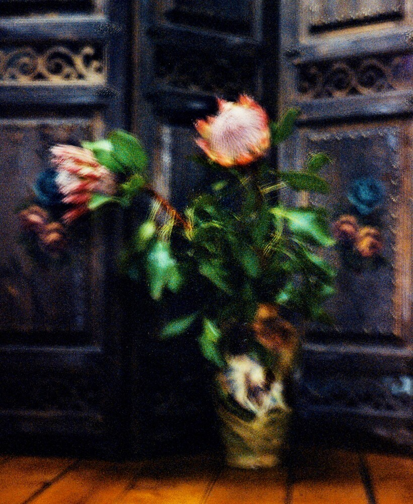 Vase by Untamedimages