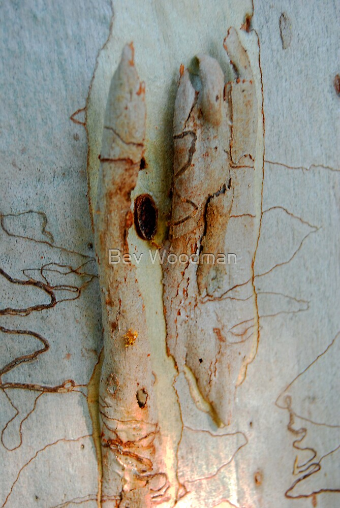 Crusty Bread Rolls Anyone? by Bev Woodman