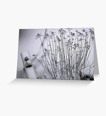 winter garden Greeting Card