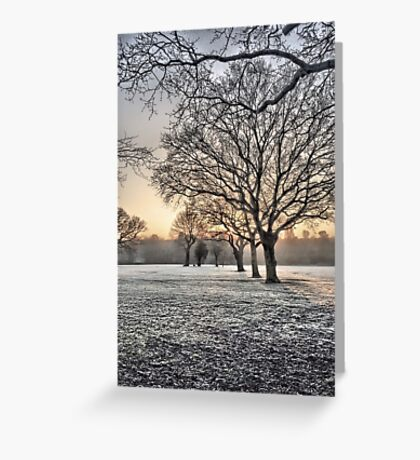 HDR Frosty Morning 2 Greeting Card