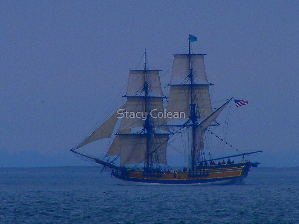 ARRR.... by Stacy Colean