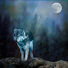 Lone Wolf Moon by Brian Tarr